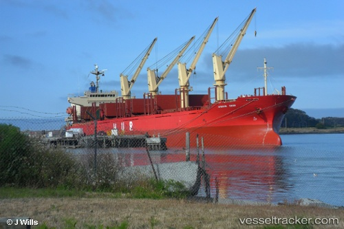 vessel African Swan IMO: 9303364, Bulk Carrier