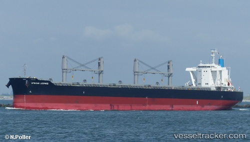 vessel African Leopard IMO: 9767572, Bulk Carrier